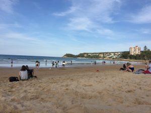 シドニーで仕事探しに苦戦したのでマンリービーチへ癒されに行く