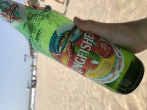 インドの喧騒に疲れたらココ!アランボールビーチの魅力をご紹介
