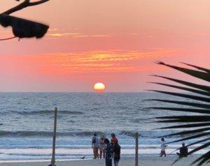 アップロード先:インドの喧騒に疲れたらココ!アランボールビーチの魅力をご紹介