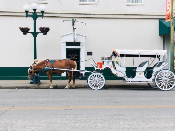 【アメリカ横断#7日目】 メキシコと戦った街!? サンアントニオの観光と治安