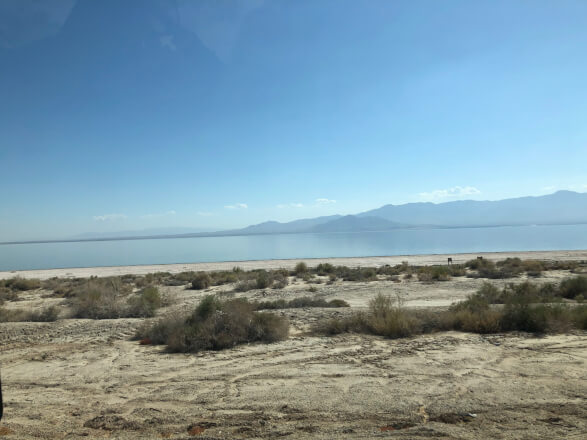 【アメリカ横断#16日目 前編】汚染された湖 Salton Seaに寄り道してみた